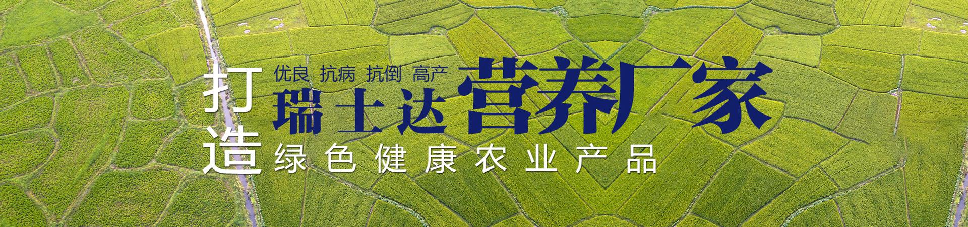 http://www.hnruishida.cn/data/upload/202105/20210511145245_806.jpg